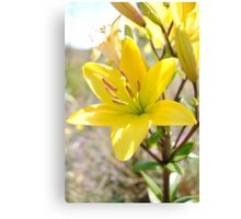 Mother Nature Beauty-Flower Canvas Print