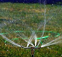 Water In Motion by Diane Arndt