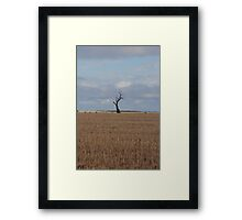 The Tree Of Life, The One Of Wisdom, Stand Out From The Rest  Framed Print
