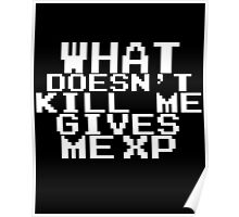 'What doesn't kill me gives me XP'  Poster