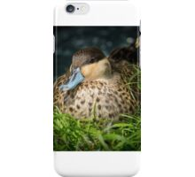 Blue Billed Duck iPhone Case/Skin