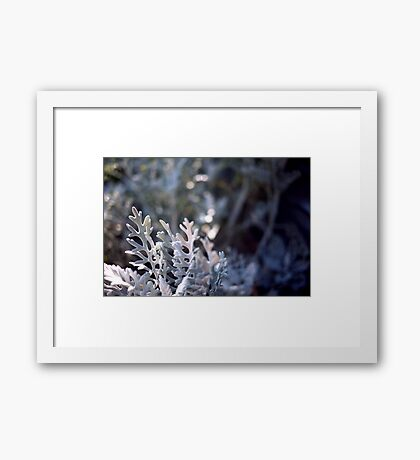Queen's crown Framed Print