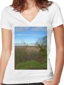 A VERY DRY LAKE BED Women's Fitted V-Neck T-Shirt