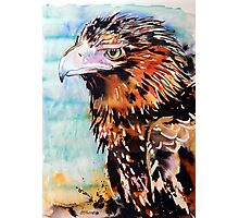 Eagle with Blue Photographic Print