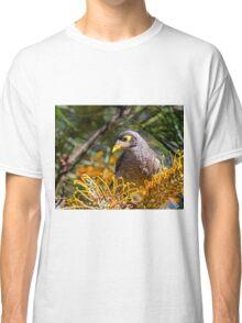 Noisy Miner Classic T-Shirt