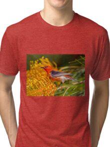 scarlet honeyeater Tri-blend T-Shirt