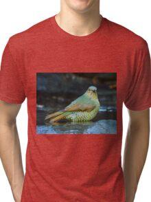Juvenile Satin Bower Bird Tri-blend T-Shirt