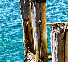 Weathered by indiafrank