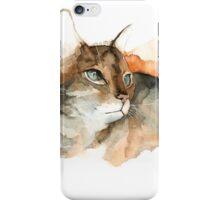 CAT#10 iPhone Case/Skin