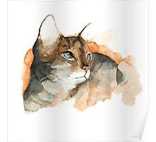 CAT#10 Poster