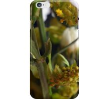 Natural background with flowers and green leaves. iPhone Case/Skin