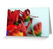 Natural composition with red petals. Greeting Card