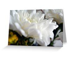 White flower macro. Greeting Card
