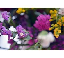 Watercolor style painted colorful flowers. Photographic Print