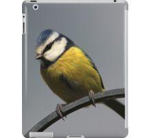 Blue tit on garden fence iPad Case/Skin