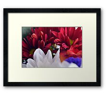 White and red flower petals, delicate natural background. Framed Print