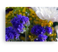 Flowers composition, purple, blue, yellow and white petals. Canvas Print