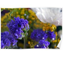 Flowers composition, purple, blue, yellow and white petals. Poster