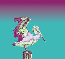 Arty Coloured Pelican by Belle Farley