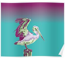 Arty Coloured Pelican Poster