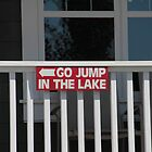 Go Jump In The Lake by Laura-Lise Wong