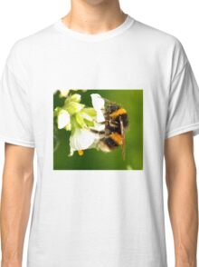Bee In Peebles Garden Classic T-Shirt