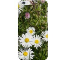 Diminutive Daisy Cluster iPhone Case/Skin