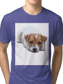 Jack Russel Tri-blend T-Shirt