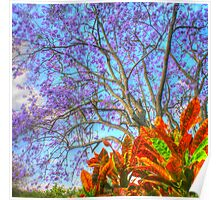 The Colours of Spring .. HDR Poster