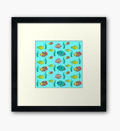 marine fish for a blue background Framed Print