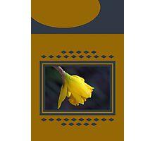 Modern Daffodil T-Shirt Dress Photographic Print