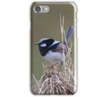 Wren World iPhone Case/Skin