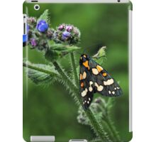 Scarlet Tiger Moth - Callimorpha Dominula iPad Case/Skin