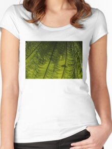 Tropical Green Rhythms - Feathery Fern Fronds - Horizontal View Down Left Women's Fitted Scoop T-Shirt