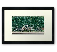 Bicycles Framed Print