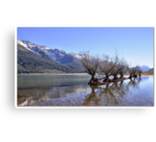 Willow Trees of Glenorchy, NZ Canvas Print