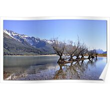 Willow Trees of Glenorchy, NZ Poster