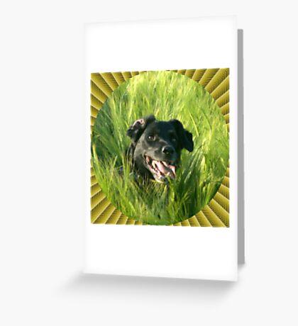 Oz psych Greeting Card