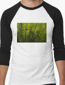 Tropical Green Rhythms - Feathery Fern Fronds - Horizontal View Upwards Right Men's Baseball ¾ T-Shirt