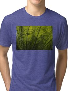 Tropical Green Rhythms - Feathery Fern Fronds - Horizontal View Upwards Right Tri-blend T-Shirt