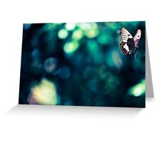 Orchard Swallowtail Butterfly - Captured In Flight Greeting Card