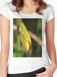 Raindrops on miniature daffodil Women's Fitted Scoop T-Shirt