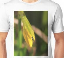 Raindrops on miniature daffodil Unisex T-Shirt