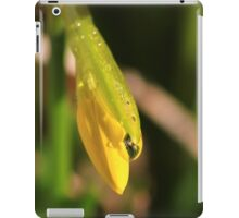 Raindrops on miniature daffodil iPad Case/Skin