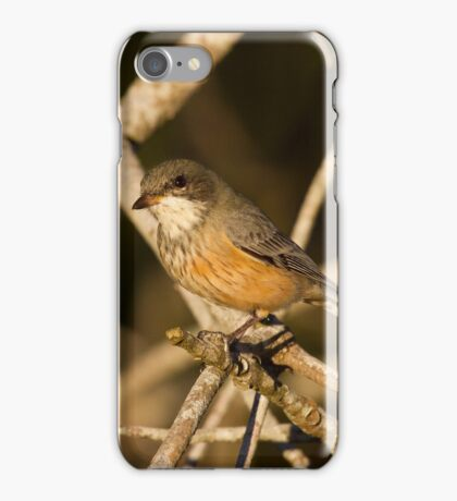 The Evening Whistler iPhone Case/Skin