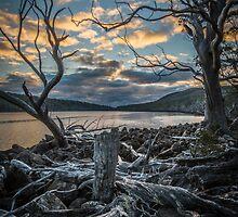 Lake Fenton by Alan  Wright