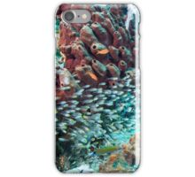 Can't See the Reef for the Fish iPhone Case/Skin