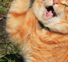 Ginger cat playing Sticker