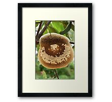 Bees on honeycomb Framed Print