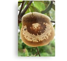 Bees on honeycomb Metal Print